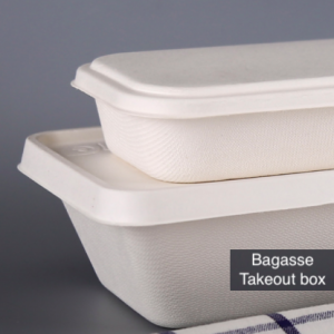 Bagasse Takeout Box(Pack of 100 sets)