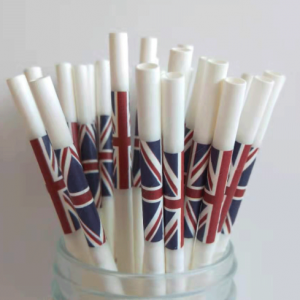 Biodegradable Colour Logo White Paper Straws(Pack of 100k)