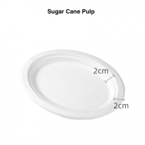 ECO Compostable Sugar Cane Heavy Duty Oval Plate for Meals (Pack of 500 pcs)