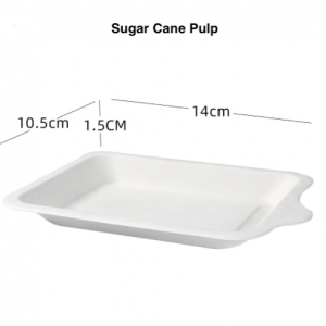 ECO Compostable Sugar Cane Heavy Duty Rectangular Plate (Pack of 500 pcs)