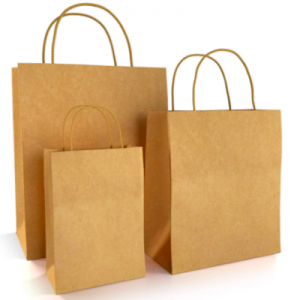 Recyclable Kraft Paper Brown Paper Bags with Handles  (Pack of 200 pcs)